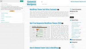 Customizr WordPress theme options panel